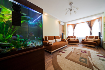 Aquarium in room